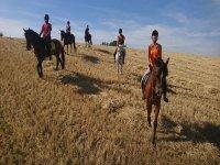Montando a caballo en grupo