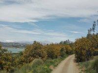 在洛斯罗马人(Los Romanes)村周围徒步