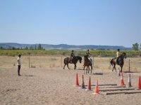 Diferentes ejercicios en la clase de equitación