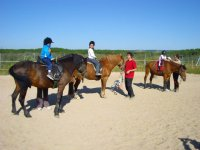 Riding lessons in Palencia