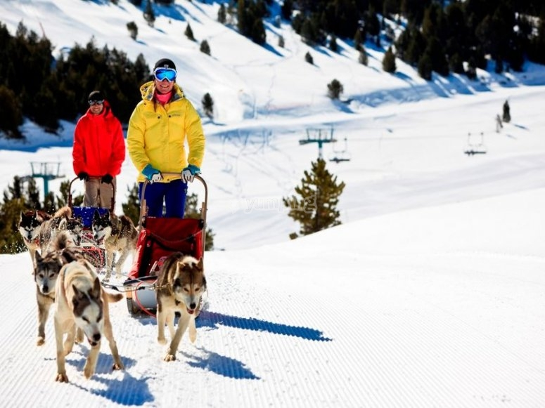 Mushing in Grandvalira Andorra