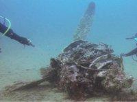 Dejándonos sorprender por el fondo marino