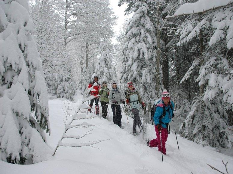 Expedicion con raquetas de nieve
