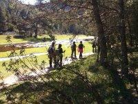 Ruta senderismo Cañon del río Lobos Soria 2 horas