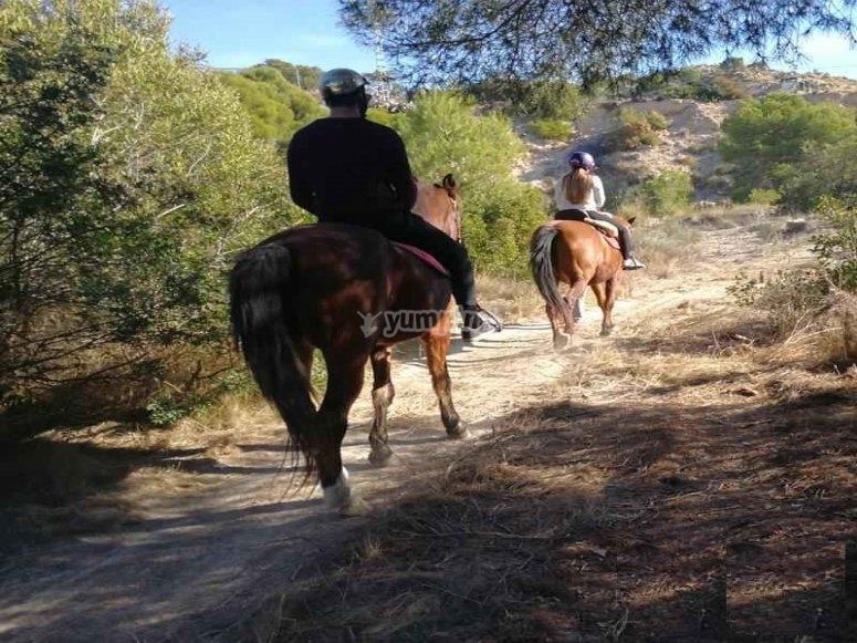 Paseo a caballo por costa de Alicante