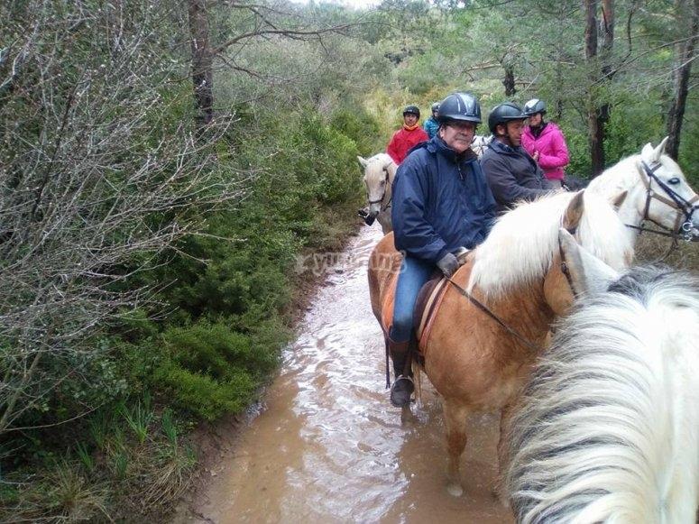 A caballo por la ruta cistercense
