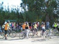 Noleggio bici per adulti