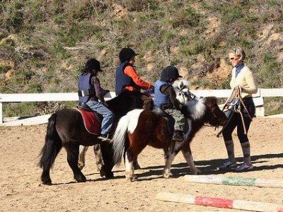 Paseo en poni para niños Tarragona 15 minutos
