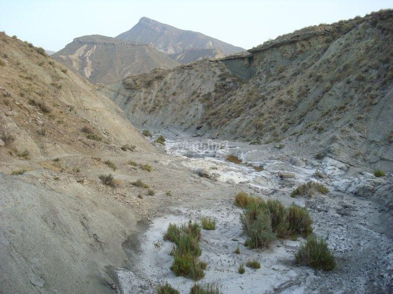 Monte Alfaro