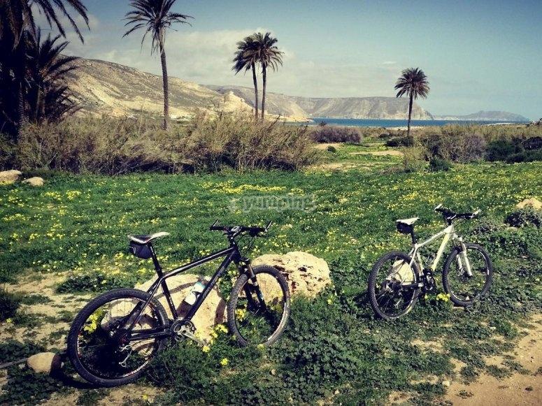 Ven a disfrutar en bicicleta