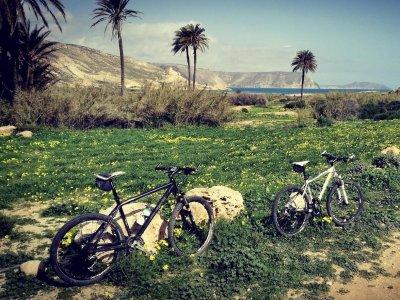 Noleggio biciclette ad Almeria per l'intera giornata
