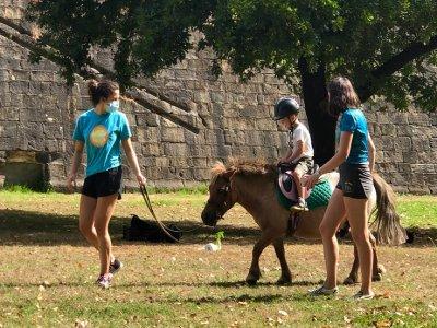 小马骑在圣苏珊娜20分钟