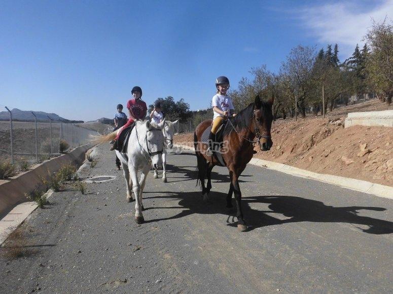 Pony ride tour