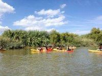 Alquiler de kayak en el Guadiana 1 hora
