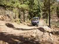 Camino empedrado en Tenerife con el buggy