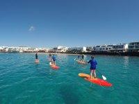 在兰萨罗特岛划桨冲浪启动课程90分钟