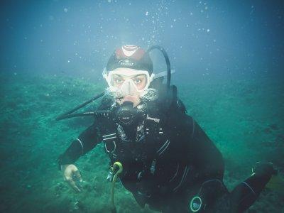 SeaSlug Diving