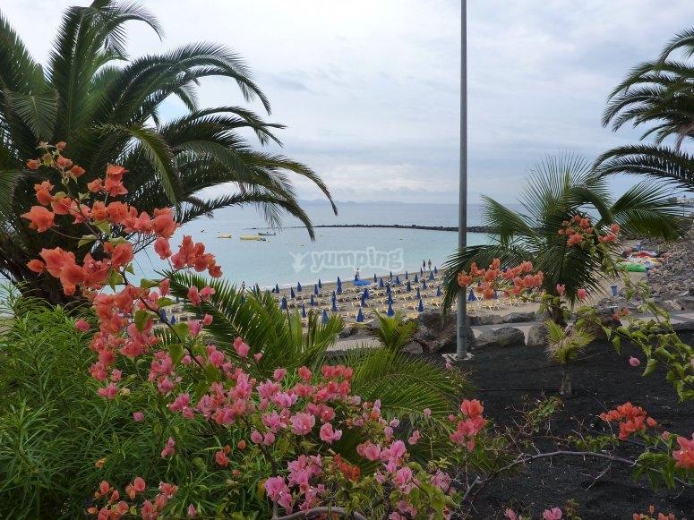 Playa Dorada en Lanzarote