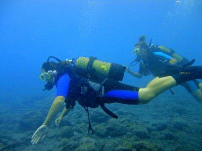 Curso Open Water Diver PADI en Tenerife