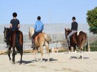 Montados a caballo