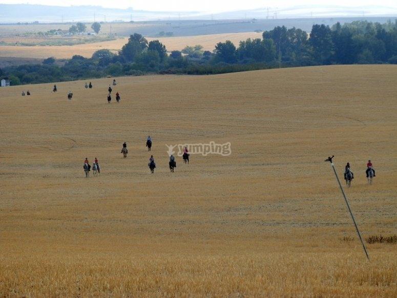 Campos de Badajoz a caballo
