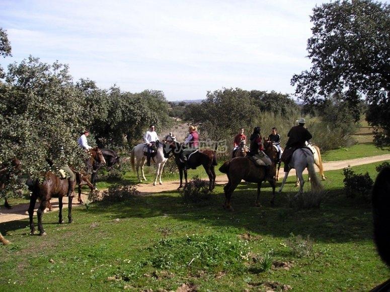 Ruta a caballo en Don Benito