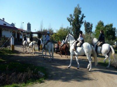 Hour-long horse riding in Badajoz