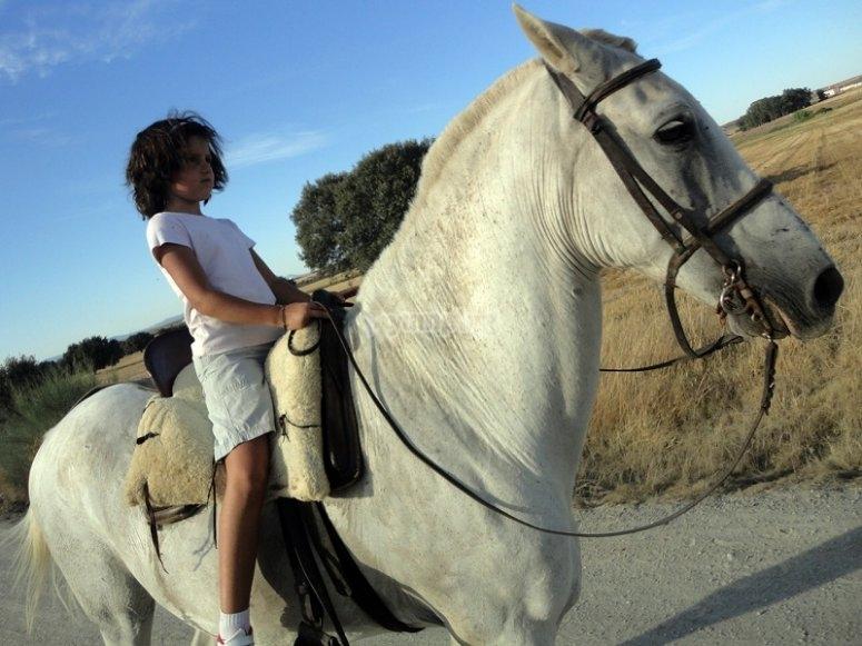 在San Benito骑马骑马
