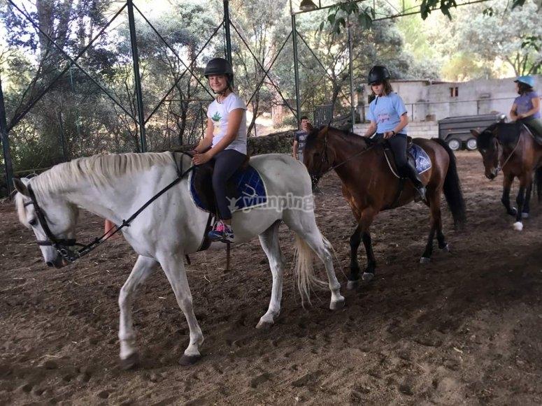 De paseo con los caballos