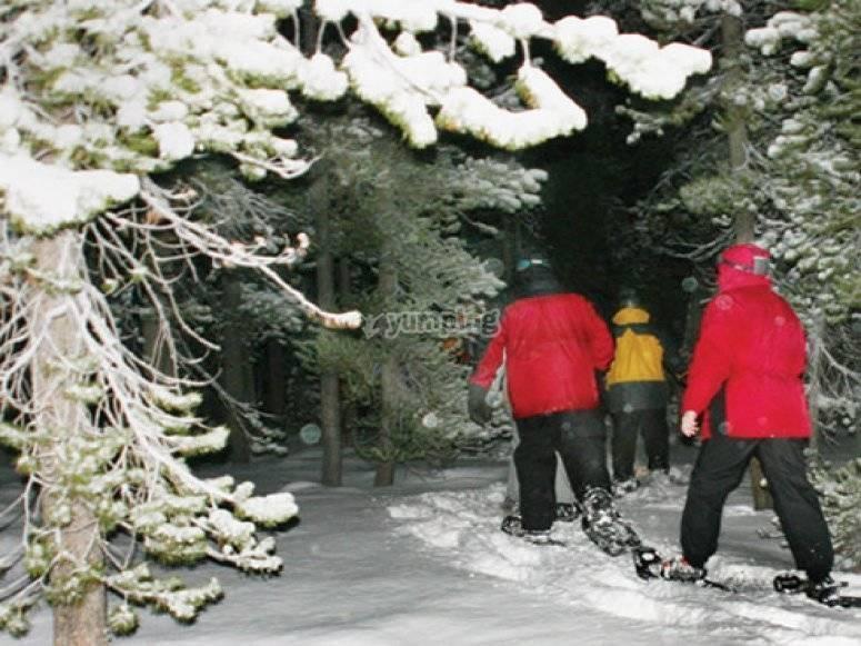 一九九九年二月雪鞋行走 - 带雪鞋行走