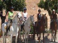 可以骑马参观葡萄园