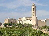 RuralJordà的葡萄园