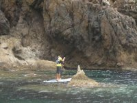 桨最好的地方冲浪设备桨冲浪rodedado自然桨冲浪独奏