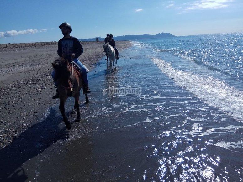 Cabalgando por la playa en Almeria