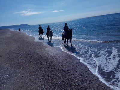 Horseback riding - Beach of Almería - 3h