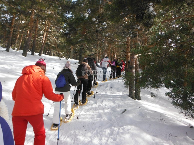 Snowshoing on the reserve