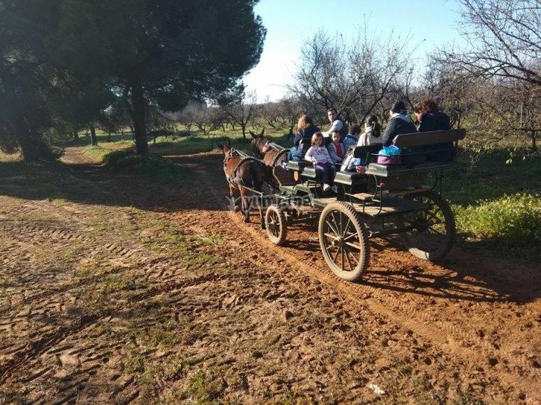 Paseando en carro de caballos en Sevilla