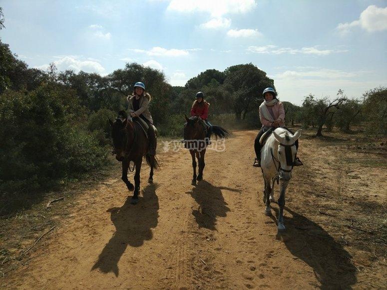 Paseo a caballo en Aznalcazar