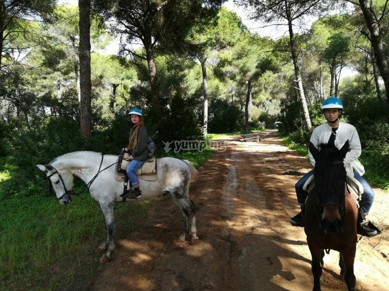 Paseo a caballo en Sevilla
