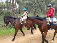 Horse riding tours in Aznalcazar