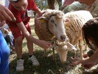 2 días en granja escuela Constantina en invierno