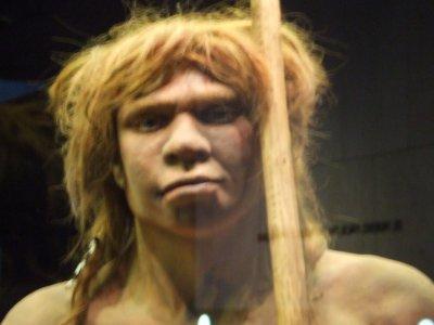 Museo Arqueológico sala Prehistoria tarifa niño