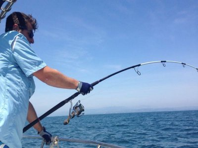 Ibiza Top Fishing Pesca