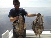 Multiples tipos de pescado
