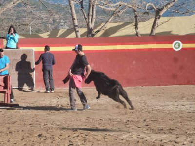 Capea en Castellón con espectáculo femenino