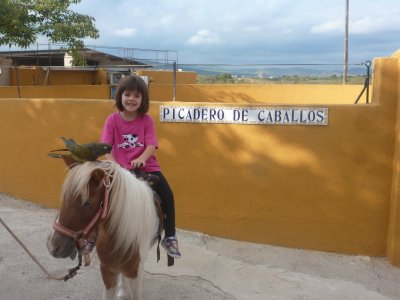 Visita guiada a ganadería de Castellón niños