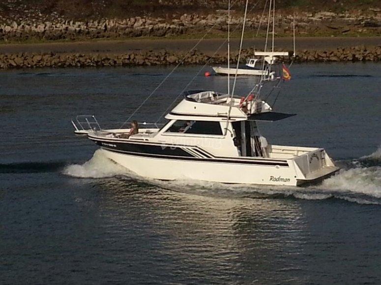 navegando costa