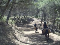 Rutas a caballo por el chorro