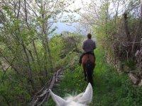 Rutas con nuestros caballos