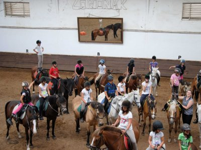 English and horse riding camp in Getxo
